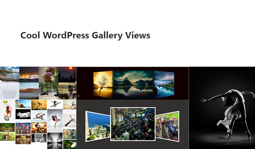 Cool Gallery Layouts for WordPress in 2016