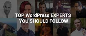 ExpertsFollow